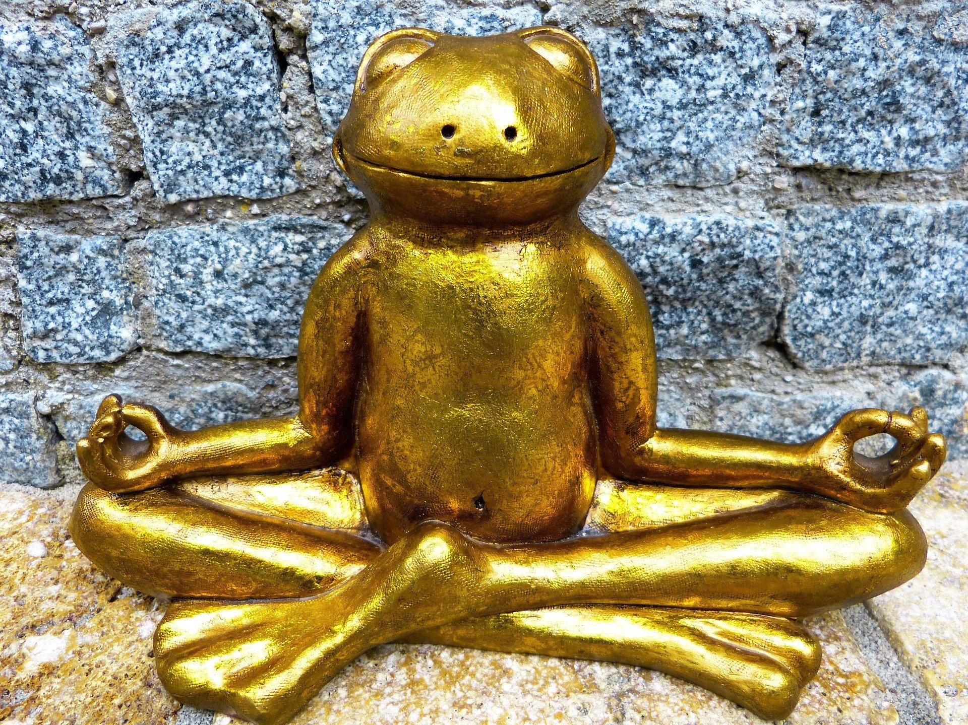 De vijf leefregels van het boeddhisme